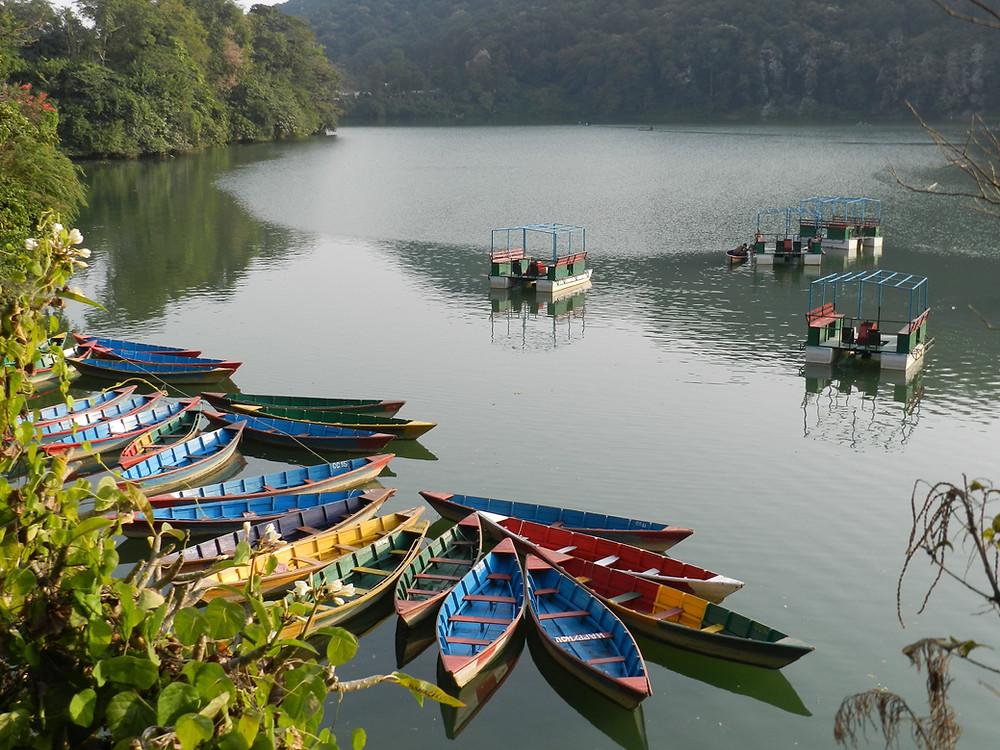 things to do in pokhara phewa lake
