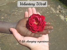 Voluntary Work   7 Life changing lessons