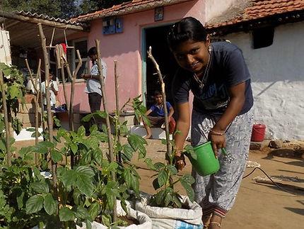 Anisha Schools Kitchen Garden