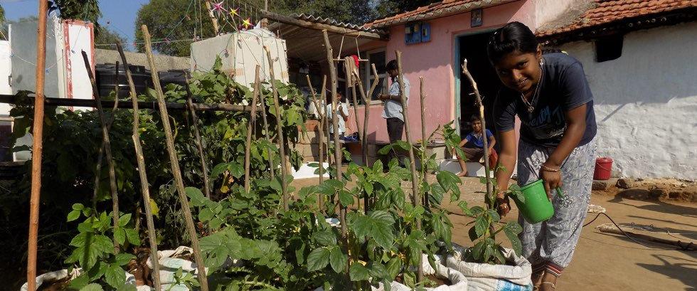 Anisha School Kitchen Garden