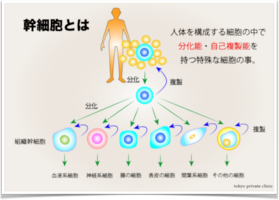 図5.png
