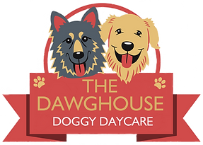 The Dawghouse Doggy Daycare