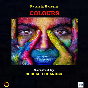 cover audiobook.jpg
