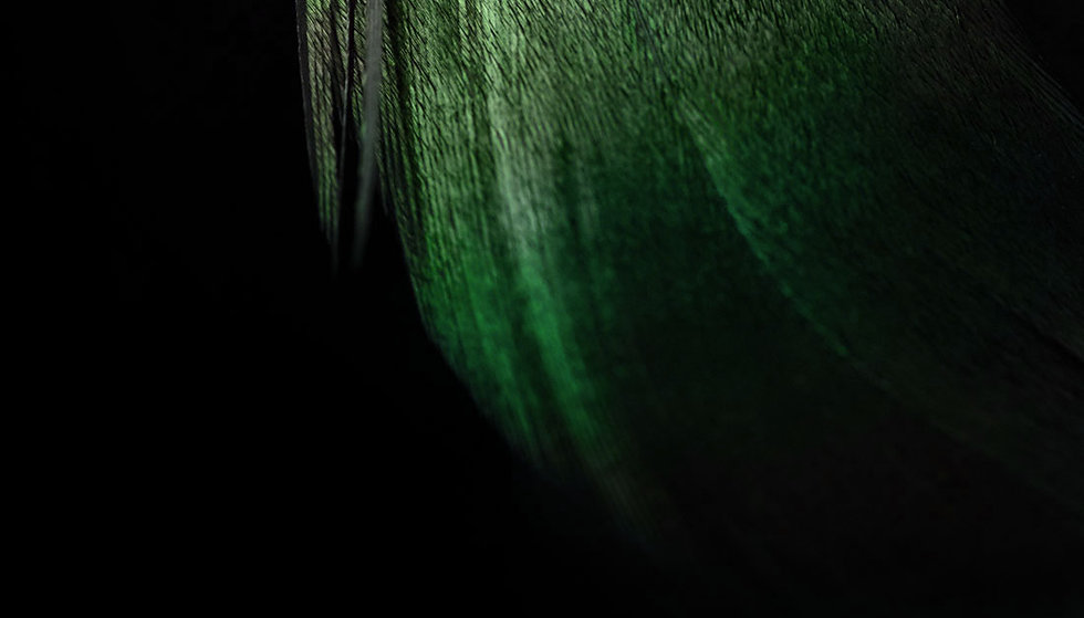 green-feather-top.jpg