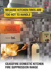 Domestic kitchen Systems.jpg