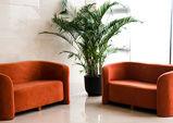 Visitors Lounge.jpg