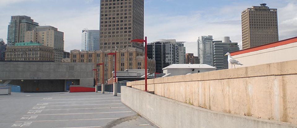 Terrace Area-socity.jpg