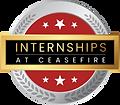logo intership.png