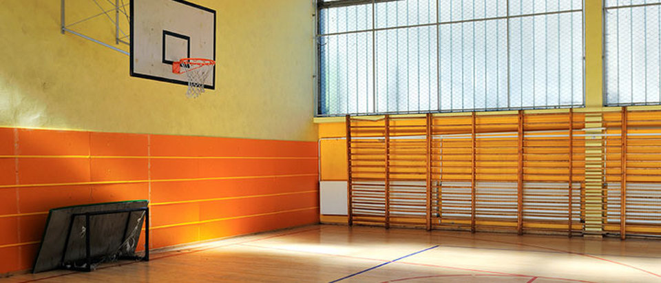 Gymnasium-School.jpg