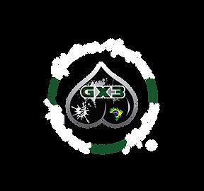 Gx3 Logo.png