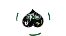 What does the GX3 logo symbolize?