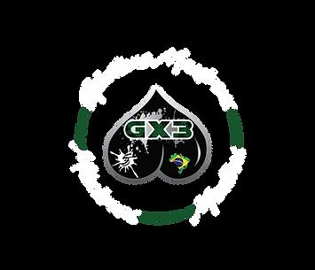 Gx3 Logo_No R.png