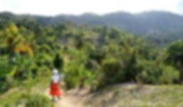 Watercress Fields Haiti