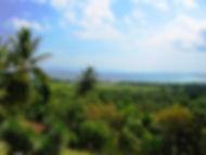 La Plaine du Cul de Sac Haiti