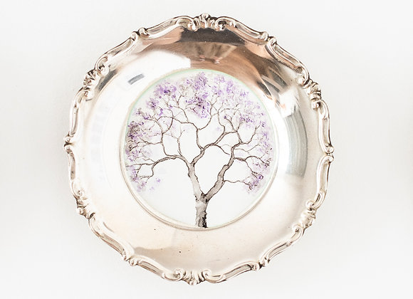'Jacaranda' tree portrait