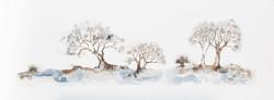 IB_Treestories_6-9991