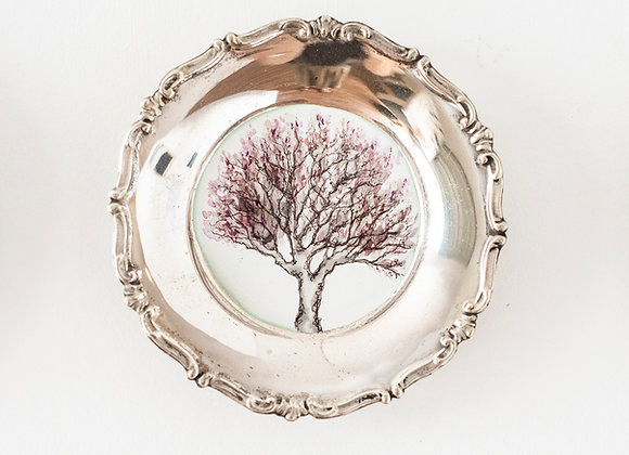 'Plum' tree portrait