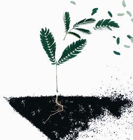 Towards aFull Life Integrated Culture (Life Balance)