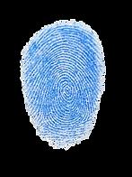 finger%20print%20blue%20and%20white%20ba