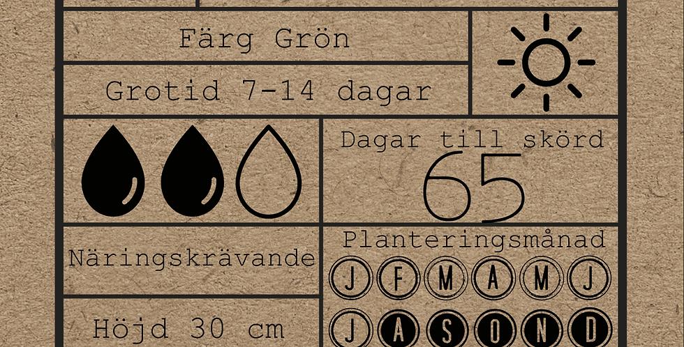 GRÖN SPETSKÅL