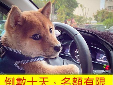 【2020臺灣教育科技展】教職專車,免費接駁,倒數十天!