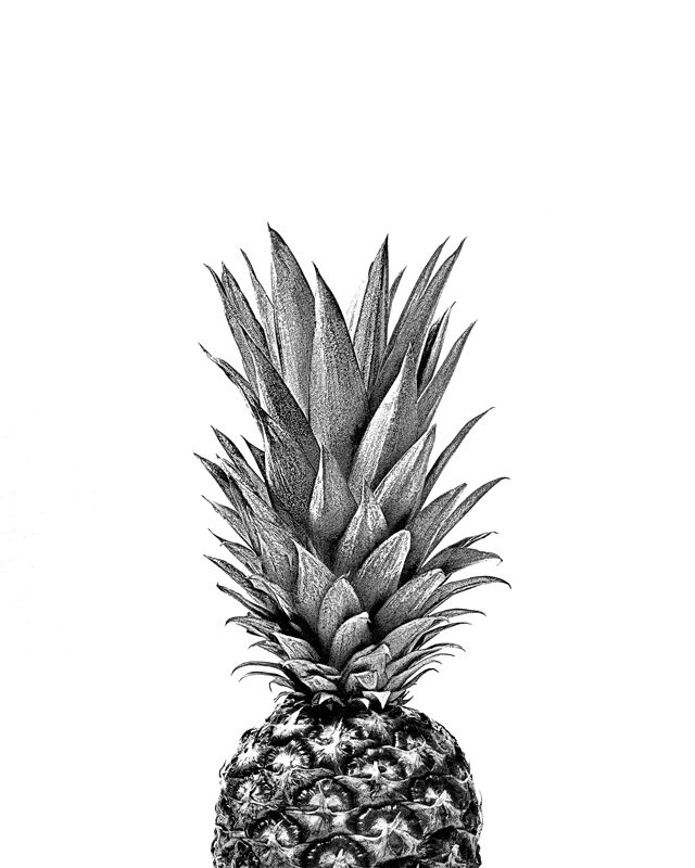 51c23c35d44334911b9fc621fac10ae1--pineapple-top-pineapple-poster