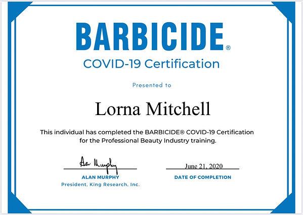 barbicide covid.jpg