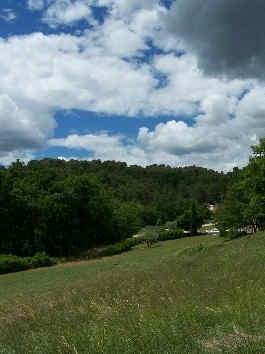 domaine-la-chapelle-forcalquier-nature.j