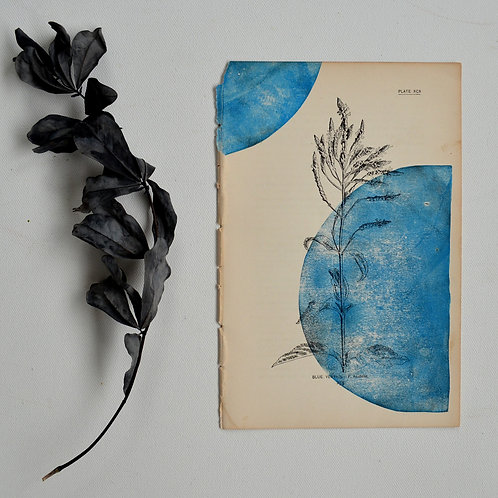 """""""Blue Vervain"""" Block Print on Antique Page"""