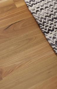 spottet-gum-matte-my-timber-flooring-avo