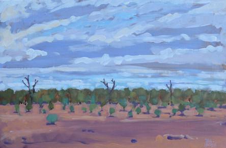 SOLD - Yowah Landscape