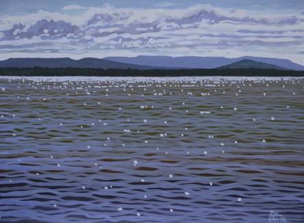 SOLD - Tuggerah Lakes No.3