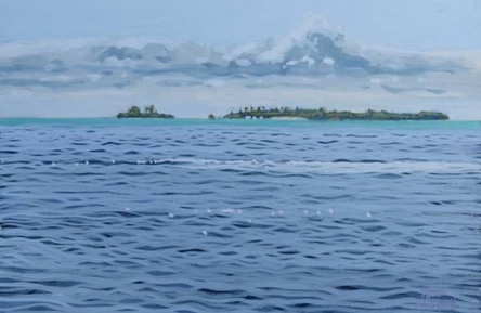 Maldivian Island No.4