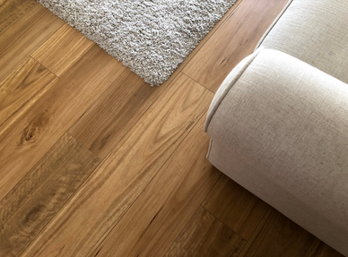blackbutt-laminate-directors-series-my-t