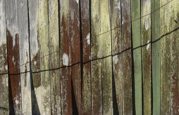 Shed Wall