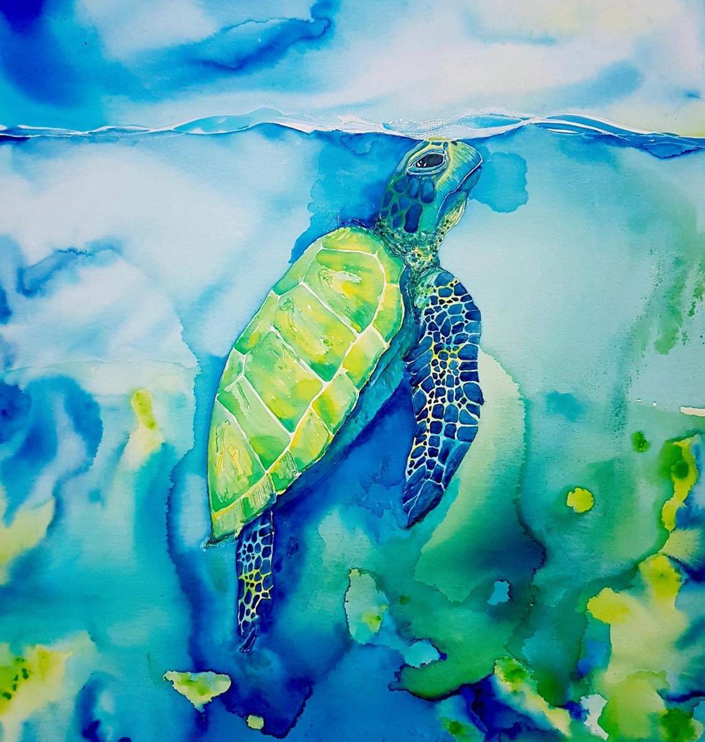 Salty-Art-by-Mia-Turtle-Australia-Watercolour-Art