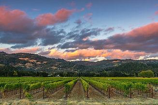 napa-valley-sunset-javier-flores.jpg