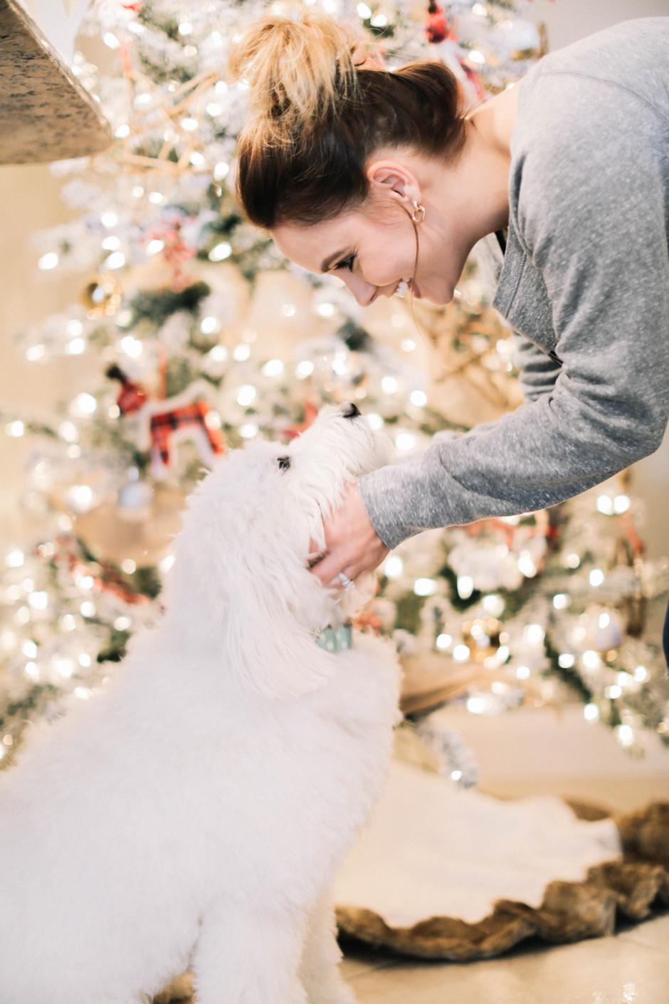 A SMITH FAMILY CHRISTMAS HOME TOUR