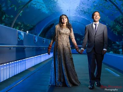 Reema & Shankar Reception