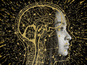 How Thoughts Turn to Things - According to Quantum Biology