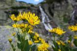 Slovakia: Hiking up to the Skok Waterfall