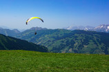 A First-timer's Paragliding Experience: Why Run When You Can Fly?