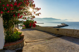 Greek Workaway: Living on the Fragrant Island of Chios