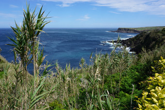 The Azores: Vibrant islands in the middle of the Atlantic - Terceria Island