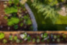 20190621 Tierra Madre Gardens Burlingame