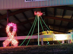 pink ribbon christmas lights.jpg