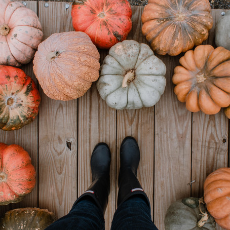 10 Things to Do in October