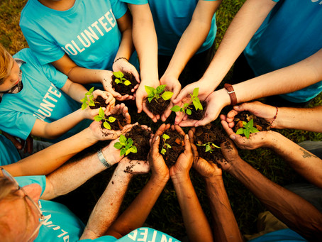 3 Benefits of volunteering, to the environment!