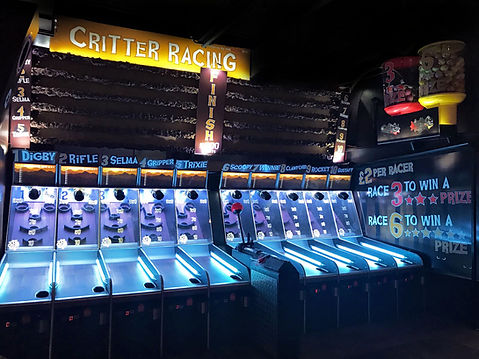 Critter Racing Ball Game Fairground, Amusement Attraction available to Hire or Purchase