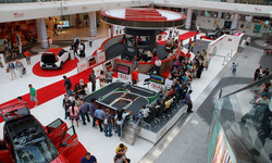 The-Racing-Bug--The-Vibrant-Exhibition-'Hub'